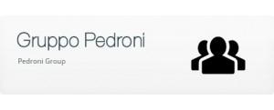 Pedroni Group